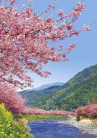 桜に見とれて事故の無いように